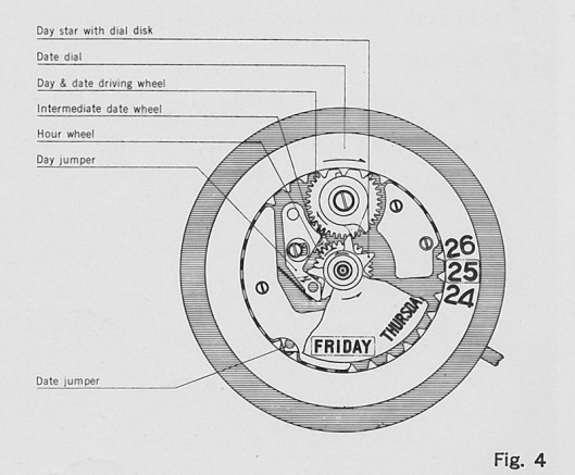 Day and date driving wheel