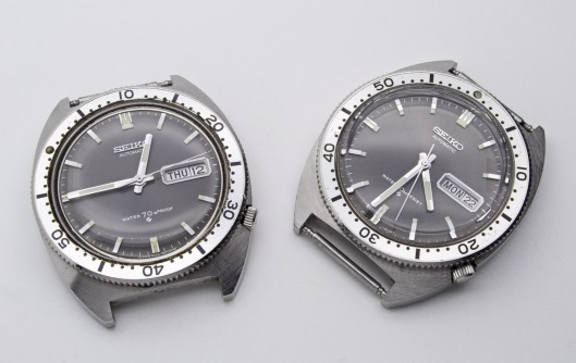 a-pair-of-sports-divers